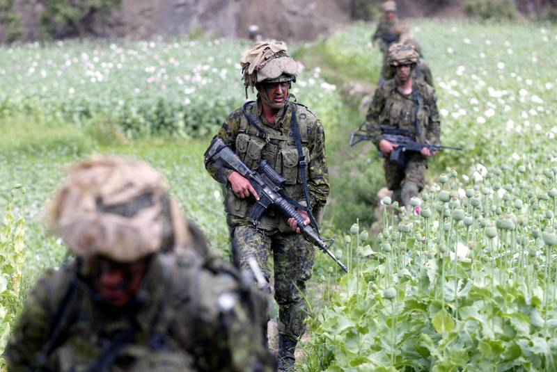 405020 36: Members of the Princess Patricia's Canadian Light Infantry patrol through poppy fields in the village of Markhanai May 6, 2002 in the Tora Bora valley region of Afghanistan. The Canadian Operation Torii is being conducted to destroy underground facilities in the mountainous eastern Afghanistan in order to deny al-Qaida access to the area. Canadian troops and U.S. forensic experts returned from the former al-Qaida stronghold with DNA samples they hope will identify some of those killed there by U.S. bombs late last year. (Photo by Joe Raedle/Getty Images)