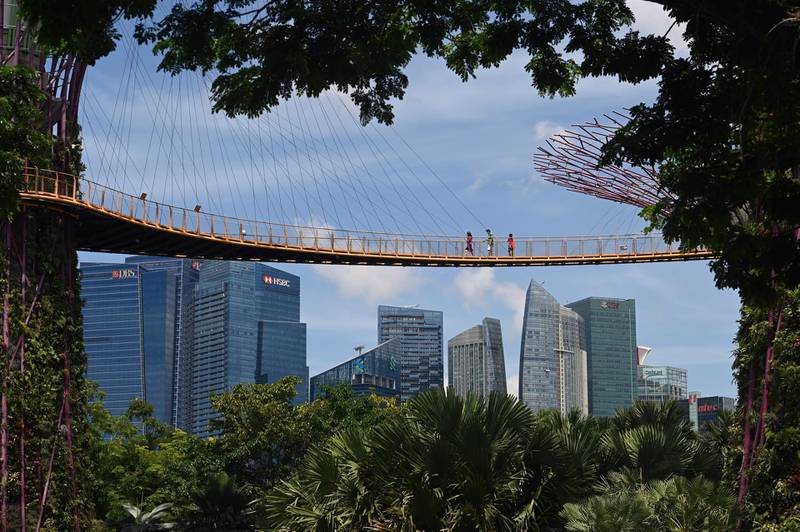 Visitors walk across the Supertree Grove skyway at Gardens by the Bay in Singapore on September 9, 2020, after the popular tourist attraction was reopened to the public on September 7 following closures due to restrictions to halt the spread of the COVID-19 coronavirus. (Photo by ROSLAN RAHMAN / AFP)