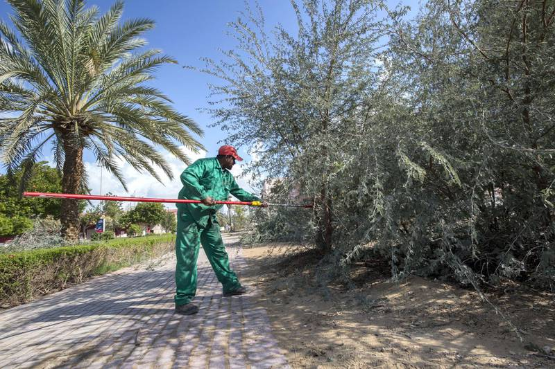 Dubai, United Arab Emirates - A Dubai Municipality worker clearing the debris at Discovery Gardens.  Ruel Pableo foir The National