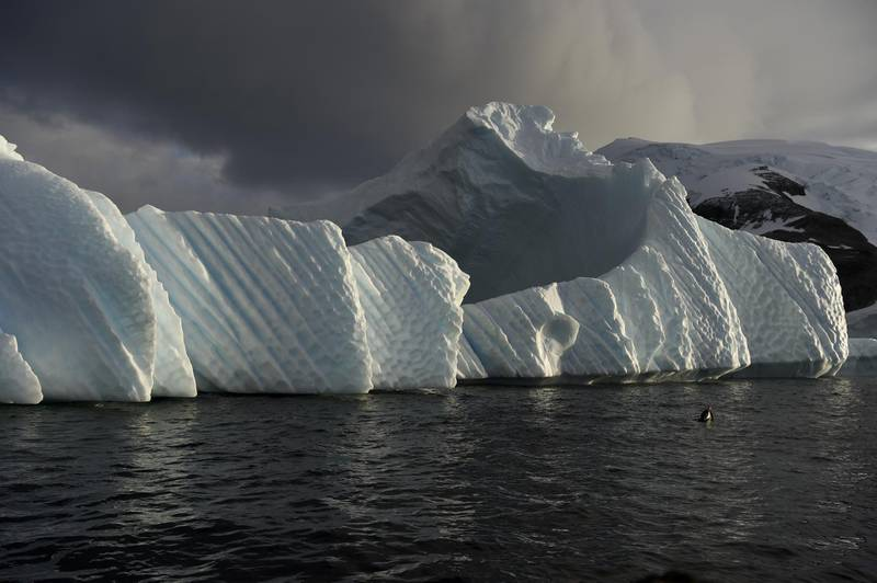 An iceberg is pictured in the western Antarctic peninsula, on March 04, 2016. - Like seals and whales, penguins eat krill, an inch-long shrimp-like crustacean that forms the basis of the Southern Ocean food chain. But penguin-watchers say the krill are getting scarcer in the western Antarctic peninsula, under threat from climate change and fishing. (Photo by EITAN ABRAMOVICH / AFP)