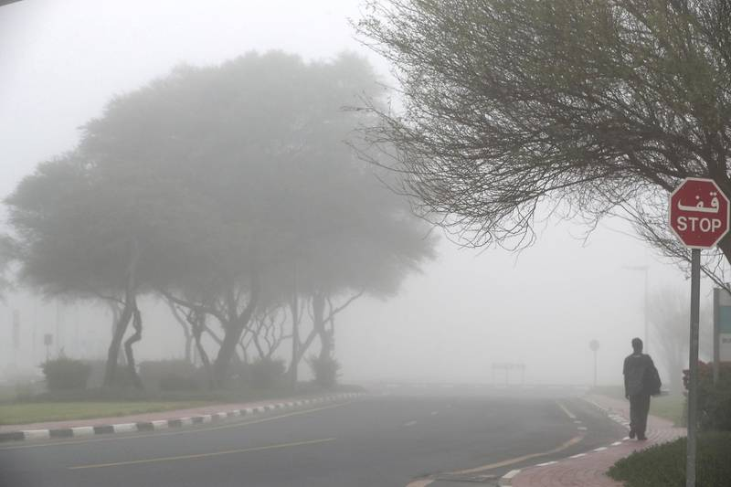 DUBAI, UNITED ARAB EMIRATES , April 08 – 2020 :- View of the early morning fog in Discovery Gardens area in Dubai. Dubai is conducting 24 hours sterilisation programme across all areas and communities in the Emirate and told residents to stay at home. UAE government told residents to wear face mask and gloves all the times outside the home whether they are showing symptoms of Covid-19 or not. (Pawan Singh/The National) For News/Online/Instagram/Standalone