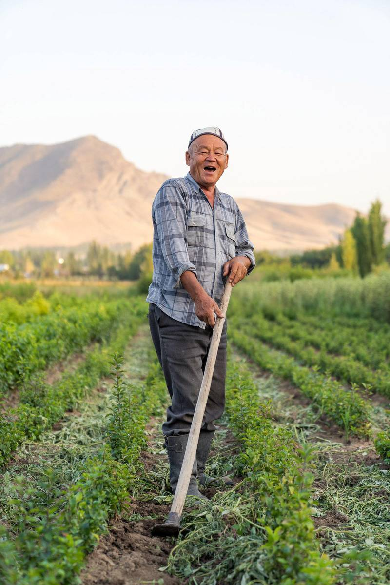 Karimkol farms his land, Kyrgyzstan. Photo: Christopher Wilton-Steer and The Aga Khan Development Network