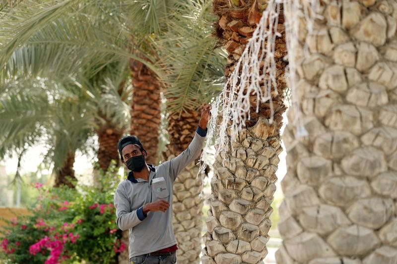 Dubai, United Arab Emirates - Reporter: N/A. News. A gentleman puts up Ramadan lights in Sustainable City, Dubai. Monday, April 12th, 2021. Dubai. Chris Whiteoak / The National