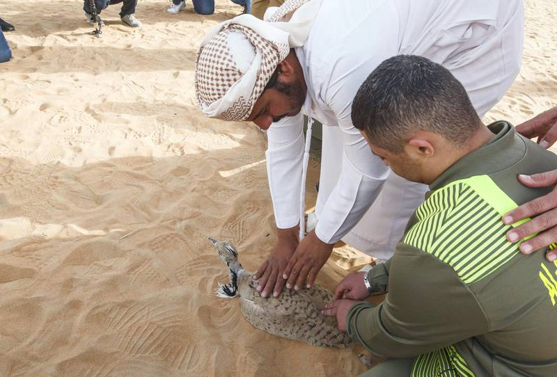 AL AIN, UNITED ARAB EMIRATES - IFHC staff helping a member of the UAE Special Olympics on how to release a bird at the release of 50 Houbara birds into their Habitat of the UAE desert by The International Fund for Houbara Conservation (IFHC).  Leslie Pableo for The National