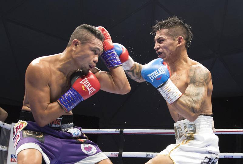Dubai, United Arab Emirates - Donnie Nietes of the Philippines (left) on a defensive move with  Pablo Carillo of Colombia at the Rotunda, Ceasar's Palace, Bluewaters Island, Dubai.  Leslie Pable for The National