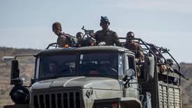 UN report reveals presence of Somali fighters in Ethiopia's Tigray region