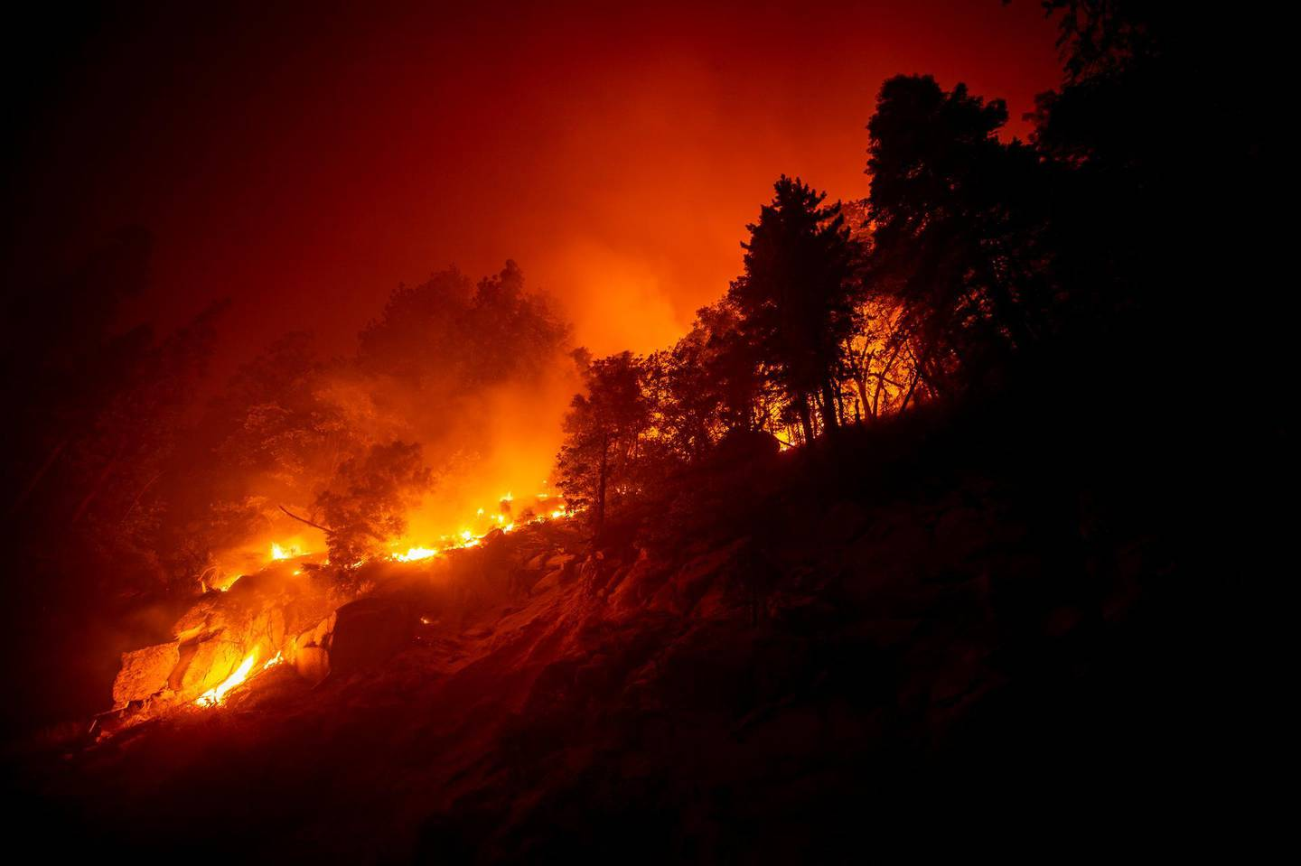 epa08669819 The Castle Fire burns in a slope next to the 190 highway in the Sequoia National Forest prompting evacuations, between Ponderosa and Camp Nelson, California, USA, 14 September 2020 (issued 15 September 2020). According to reports, the Castle Fire has burnt over 90,000 acres of forest.  EPA/ETIENNE LAURENT