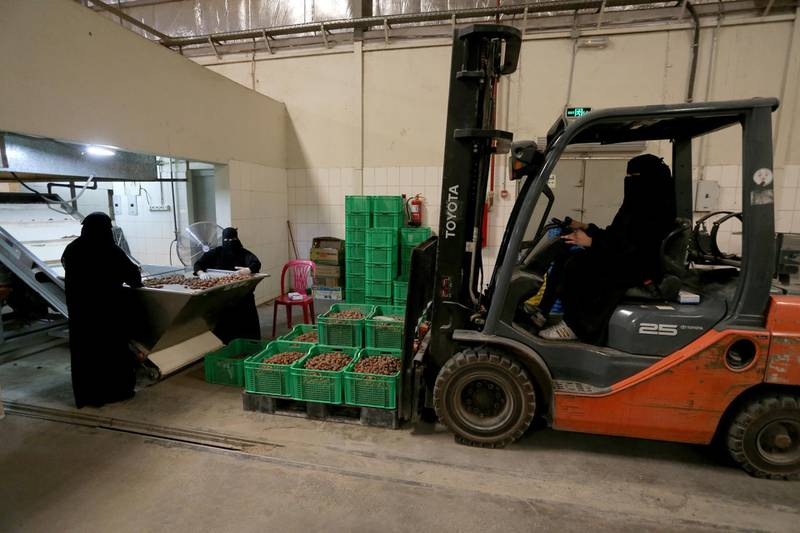 A Saudi woman drives a forklift to transport dates at a factory in Al-Ahsa, Saudi Arabia, September 10, 2020. Picture taken September 10, 2020. REUTERS/Ahmed Yosri