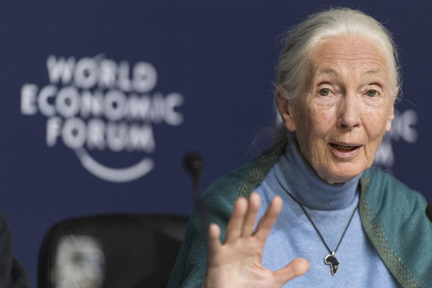epa08150873 Jane Goodall, English primatologist and anthropologist, addresses a press conference during the 50th annual meeting of the World Economic Forum, WEF, in Davos, Switzerland, 22 January 2020. The meeting brings together entrepreneurs, scientists, corporate and political leaders in Davos from January 21 to 24.  EPA/ALESSANDRO DELLA VALLE