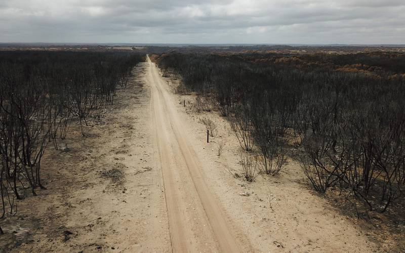 An aerial photo taken on January 16, 2020 shows a fire damaged landscape on Kangaroo after bushfires ravaged the island off of the south coast of Australia.  Australia is reeling from bushfires that since September 2019 having claimed 28 lives, including two on Kangaroo Island, and razed 10 million hectares (100,000 square kilometres) of land -- an area larger than South Korea or Portugal. - TO GO WITH Australia-livestock-fire-environment,FOCUS by Holly ROBERTSON  / AFP / PETER PARKS / TO GO WITH Australia-livestock-fire-environment,FOCUS by Holly ROBERTSON