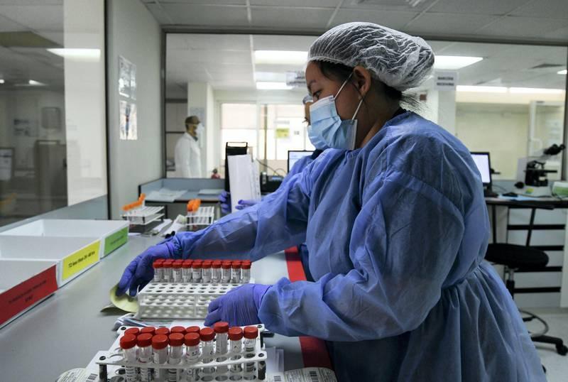 Abu Dhabi, United Arab Emirates - Medical staff working long hours at Medical Laboratory in Abu Dhabi. Khushnum Bhandari for The National