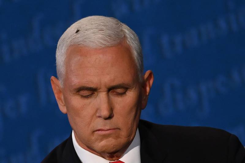 A fly rests on the head of US Vice President Mike Pence as he takes notes during the vice presidential debate against US Democratic vice presidential nominee and Senator from California Kamala Harris in Kingsbury Hall at the University of Utah on October 7, 2020, in Salt Lake City, Utah.  / AFP / Eric BARADAT