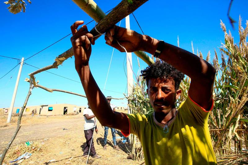 An Ethiopian refugee, who fled the fighting in Tigray Region, builds a shelter at a border reception centre (Village 8) in Gedaref State, eastern Sudan, on November 29, 2020.  / AFP / ASHRAF SHAZLY