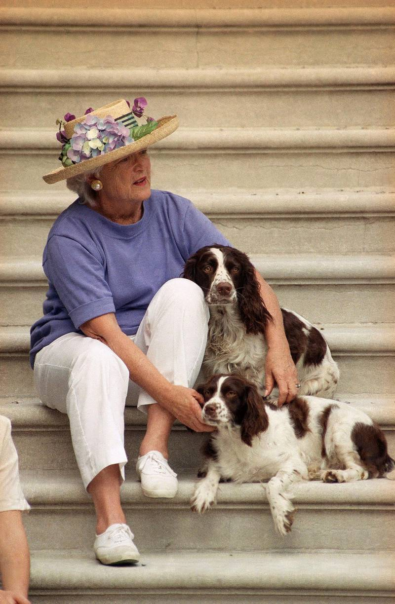 Mandatory Credit: Photo by Bob Strong/AP/Shutterstock (5982522a)First lady Barbara Bush pets the family dogs Millie, bottom, and Ranger on the steps of the White House, while waiting for President George H. Bush to return from playing golfBarbara Bush, Washington, USA