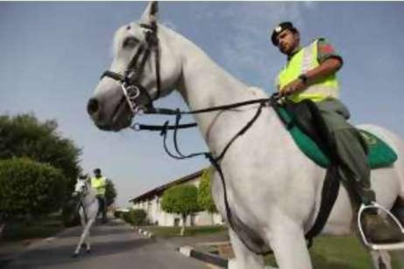 United Arab Emirates - Dubai - August 4, 2010.NATIONAL: Dubai Mounted Police first corporal Nasser Yousef (cq-al), rides Cozmal (cq-al), an Arabian horse at their stables located in Jumeirah in Dubai on Wednesday morning, August 4, 2010. Amy Leang/The National