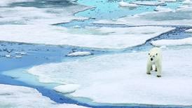 Ice levels plummet by 90% in parts of Arctic Ocean