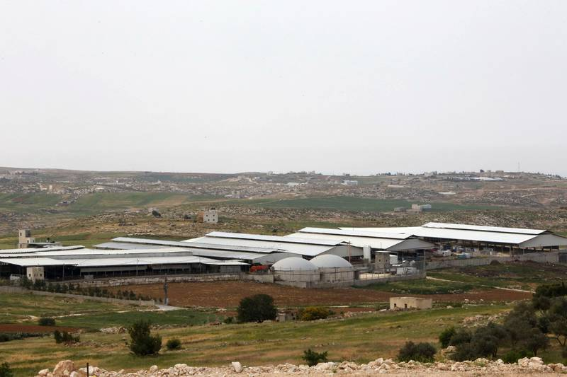 A picture taken on April 10, 2017 shows a general view of the Jebrini dairy farm in the West Bank town of Hebron, where cow dung is used to produce electricity as an alternative power source. - Power comes in many forms, but Palestinian cattle farmer Kamal al-Jebrini's family looked to where others may fear to tread for a new source of it: cow dung. The family has begun recycling waste from its cows to produce electricity for one of the largest Palestinian dairy plants and even to provide power to some houses. The project in the occupied West Bank is the first of its kind in the Palestinian territories, where renewable energy usually means solar panels. (Photo by HAZEM BADER / AFP)