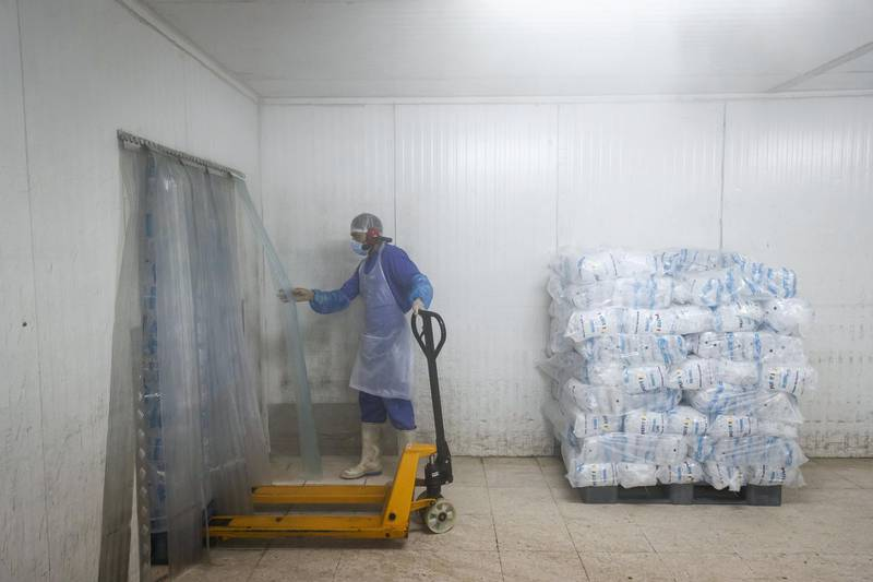 PHOTO PROJECT: ICE FACTORY. A visit to the Gulf Ice Factory & Modern Ice Factory (G&M Ice) located in Dubai Investment Park on June 15th, 2021. Tube Ice packed in 1 kg , 2 kg , 5 kg & 20 Kg are refigirated at -18c in preparation to be delivered to retail outlets through the UAE. With a production capacity that runs for 24 hrs the factory is able to produce 120 tons of Pure Ice in a day using 250 000 liters of water.The company first started producing ice in the UAE in 1976 in the emirate of Sharjah followed by setting up of multiple units like Modern Ice Factory in 1989, Quality Ice Distribution Office in 1992, Tube Ice Production in 2000 & its latest production facility at Dubai Investments Park launched in May 2008. They are the largest ice producer in the UAE. Antonie Robertson / The National.Reporter: Antonie Robertson for National
