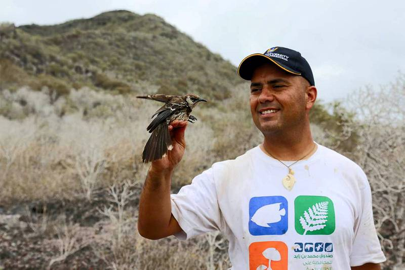 MBZ Conservation Fund grantee Dr. Luis Ortiz-Catedral. He is a conservation biologist at Massey University in New Zealand and leader of The Galapagos Land Iguana Project, Santiago Island, Ecuador (Photo credit Joshue Ortiz-Catedral)