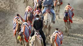 Coronavirus: Camel races resume but the majlis stays shut