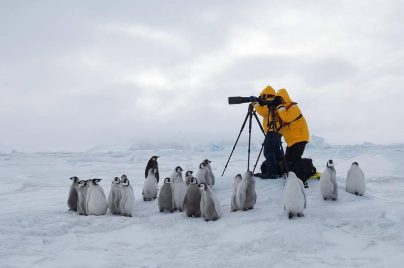 Snow Hill Island, Antarctica