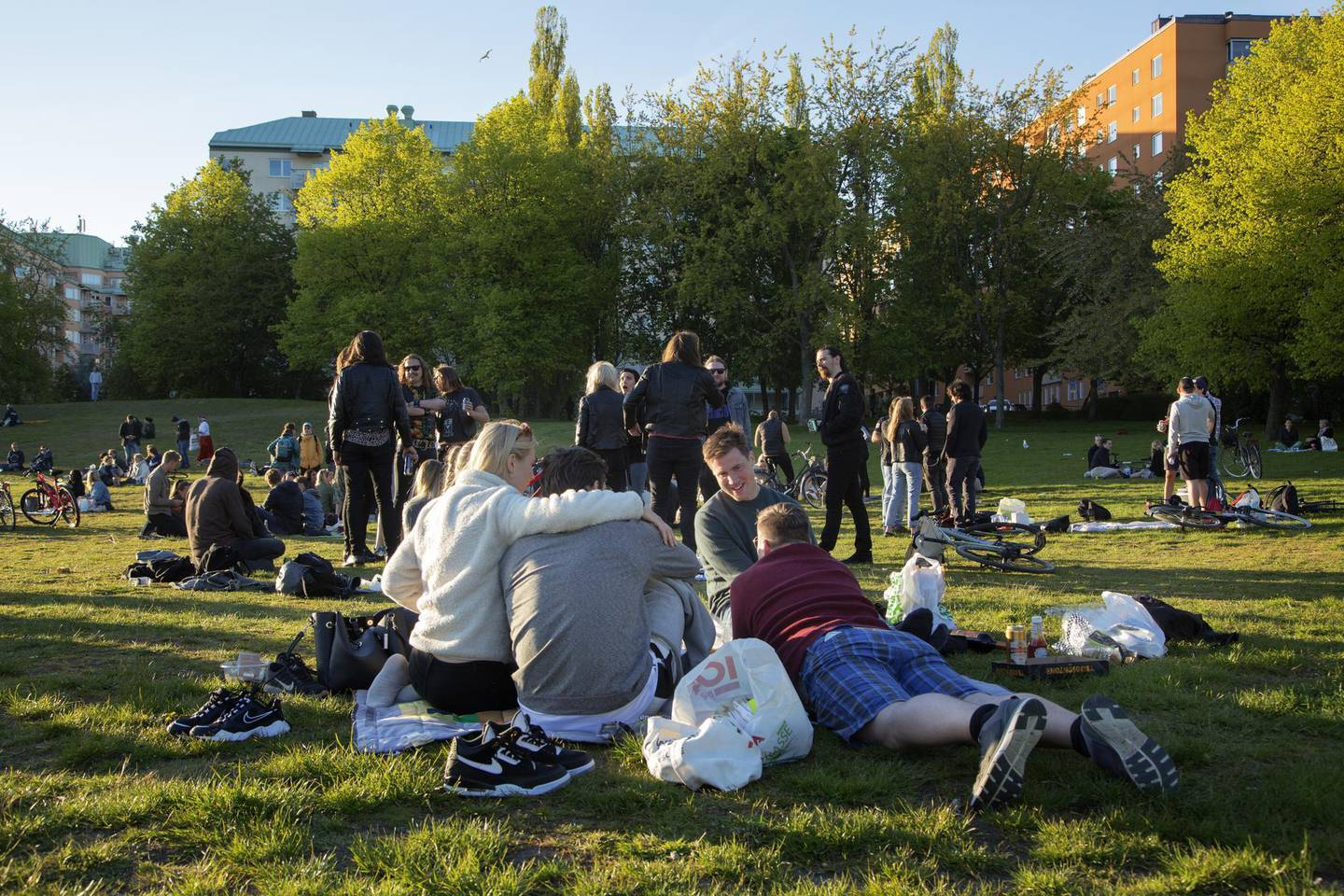 Groups of people sit in a park at Tantolunden in Stockholm, Sweden, on Friday, May 22, 2020. Sweden, which has refused to close down schools and restaurants to contain the new coronavirus, is being closely watched as many other countries are gradually opening up their economies from stricter lockdowns. Photographer: Loulou D'Aki/Bloomberg