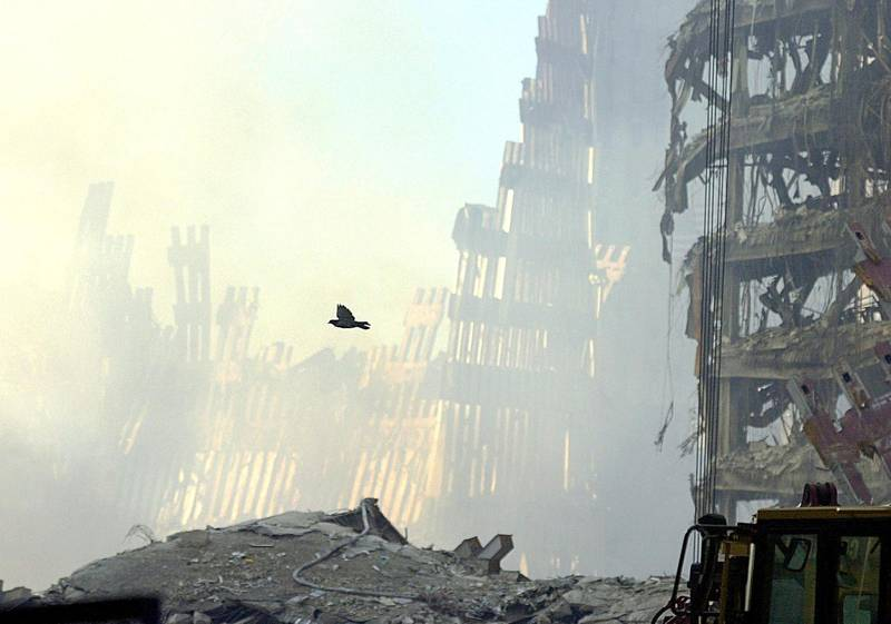 A bird takes flight over the wreckage of the World Trade Center twin towers 16 September, 2001. Clearing and rescue work continues on the site of the nations worst terrorist attack.  AFP PHOTO/Roberto SCHMIDT (Photo by ROBERTO SCHMIDT / AFP)