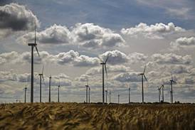 Renewable energy jobs reach 12 million globally in 2020, report finds