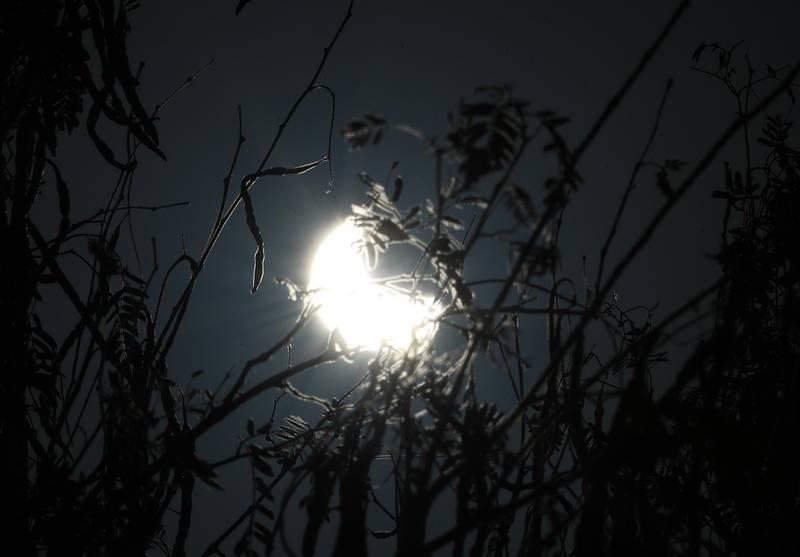 Dubai, United Arab Emirates - Reporter: N/A. News. Partial eclipse appears over the UAE. Wednesday, June 17th, 2020. Al Qudra Lakes, Dubai. Chris Whiteoak / The National