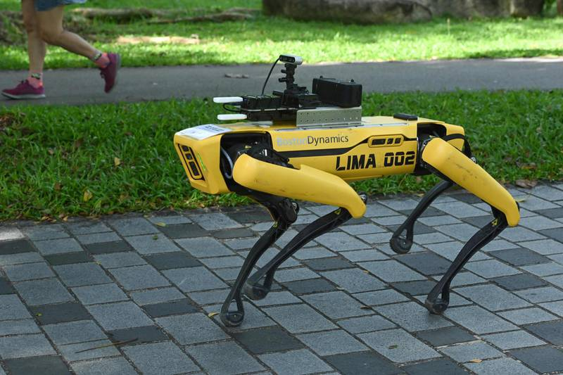 """(FILES) In this file photo taken on May 8, 2020, a four-legged robot called Spot, which broadcasts a recorded message reminding people to observe safe distancing as a preventive measure against the spread of the COVID-19 coronavirus, is seen during its two-week trial at the Bishan-Ang Moh Kio Park in Singapore. A yellow robot dog called Spot which found fame online for dancing to hit song """"Uptown Funk"""" has been deployed to patrol a Singapore park and ensure people observe social distancing. / AFP / Roslan RAHMAN"""