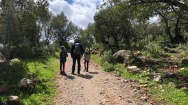 Take missteps in your stride on walking trips with kids