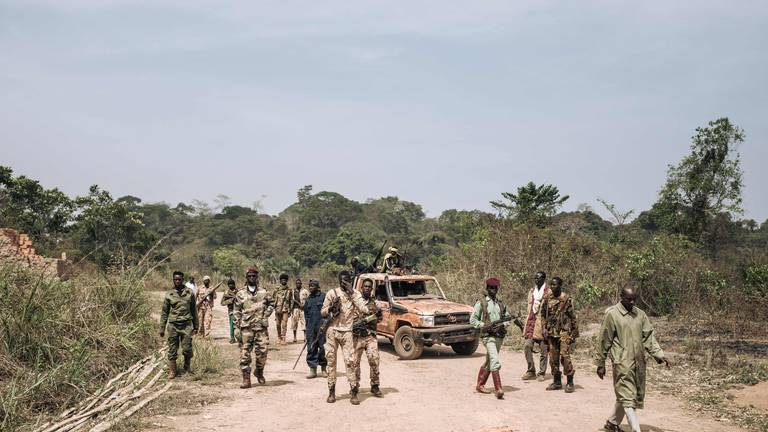 An image that illustrates this article Central African Republic urged to ditch Russian mercenaries