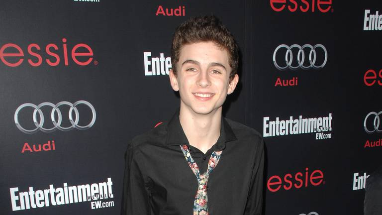 An image that illustrates this article Timothee Chalamet's style evolution - in pictures