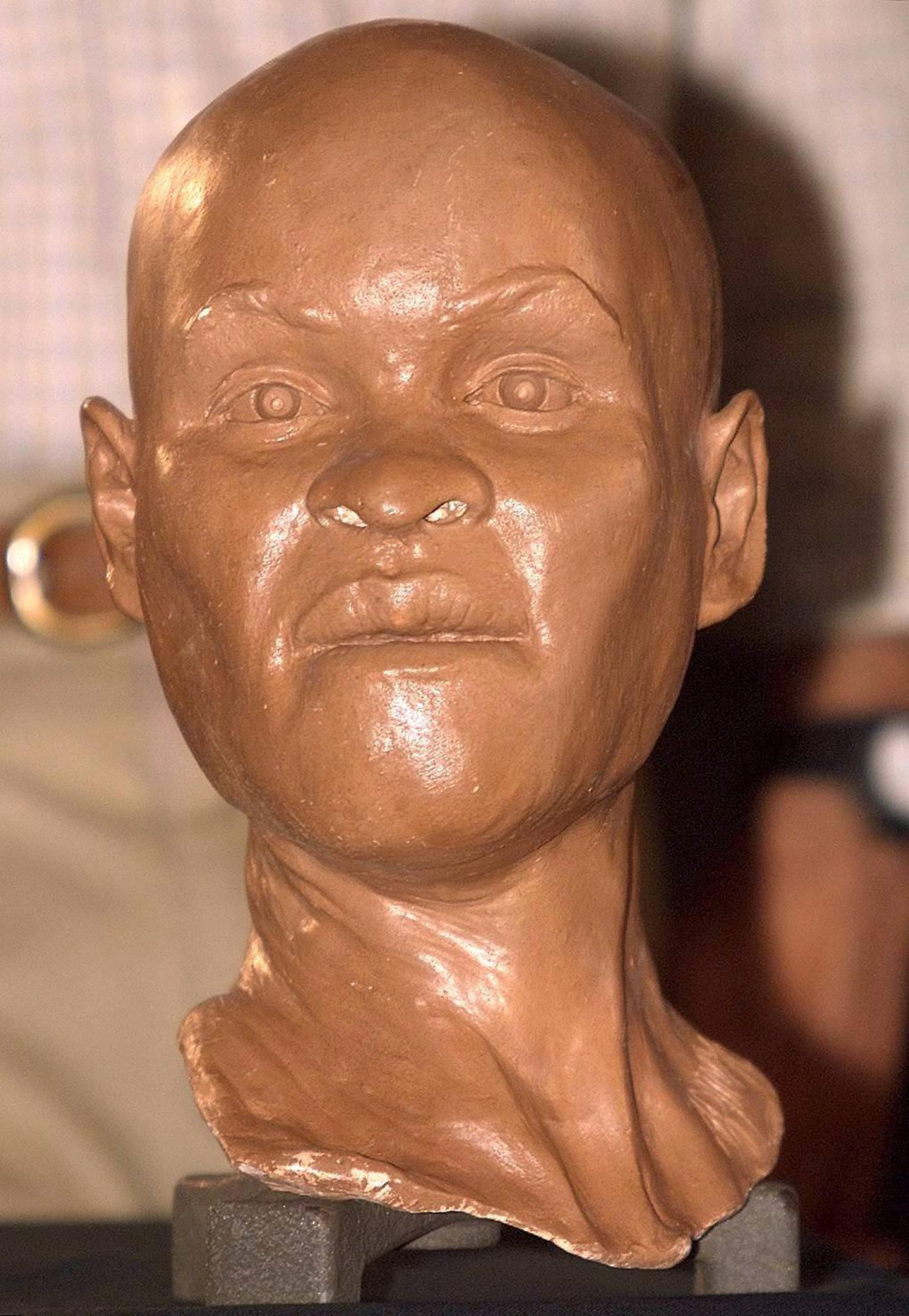 """(FILES) File photo taken on September 20, 1999 of a reconstruction of the head of """"Luzia"""", """"the first Brazilian woman"""", during its presentation at the National Museum of History in Rio de Janeiro, Brazil. - A massive fire ripped on September 2, 2018 through Rio de Janeiro's treasured National Museum, one of Brazil's oldest, in what the nation's president says is a """"tragic"""" loss of knowledge and heritage. The museum's collection included art and artifacts from Greco-Roman times and Egypt, as well as the oldest human fossil found within today's Brazilian borders, known as """"Luzia,"""" which was lost in the fire. (Photo by ANTONIO SCORZA / AFP)"""