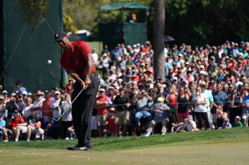 Mar 11, 2018; Palm Harbor, FL, USA; Tiger Woods chips onto the green on the 4th during the final round of the Valspar Championship golf tournament at Innisbrook Resort - Copperhead Course. Mandatory Credit: Jasen Vinlove-USA TODAY Sports