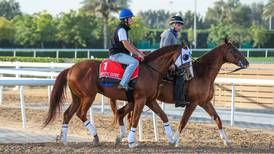 Mystic Guide gets 'perfect' draw for Dubai World Cup