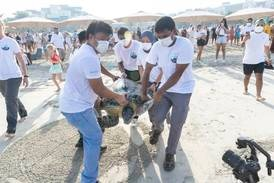 'Turtle sheikh' helps release 2,000th rescued creature back into the sea in Dubai