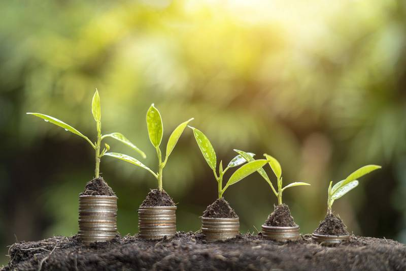 The Business Coin and Growth. Getty Images