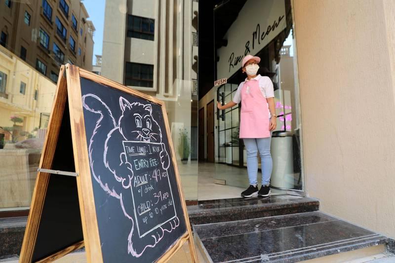 Dubai, United Arab Emirates - Reporter: Janice Rodrigues. Features. Jyra waits to greet customers. Vibrissae Cat Cafe has just opened in Al Safa, Dubai. Monday, March 8th, 2021. Dubai. Chris Whiteoak / The National