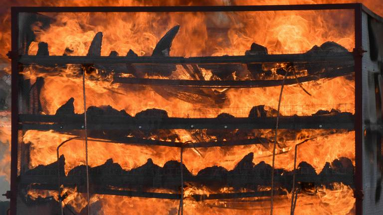 An image that illustrates this article India burns 2,500 rhino horns to deter poaching in Assam
