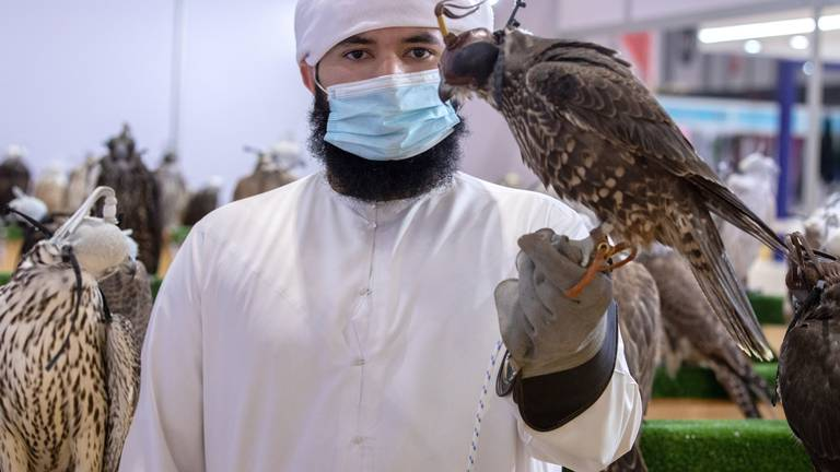 An image that illustrates this article Adihex's biggest event celebrates heritage and sustainability