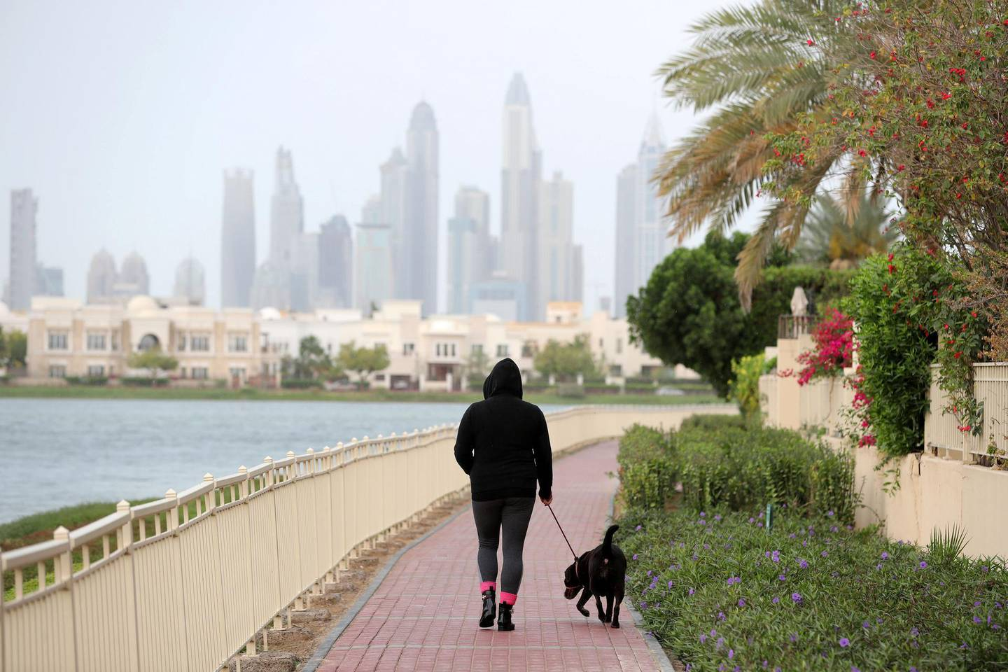 Dubai, United Arab Emirates - March 03, 2019: A woman walks her dog in the Springs as tight rain falls on a grey day in Dubai. Wednesday the 3rd of April 2019. The Springs, Dubai. Chris Whiteoak / The National