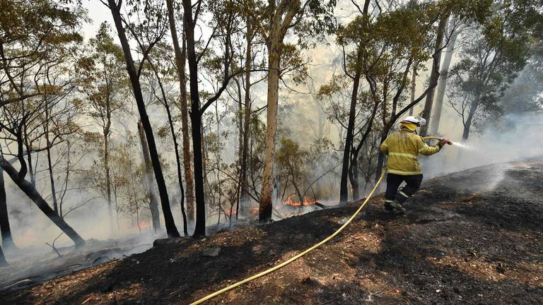 An image that illustrates this article Australia bracing for worst as wind and heat drive raging fires