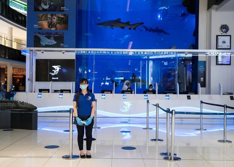 DUBAI, UNITED ARAB EMIRATES. 11 JUNE 2020.  Dubai Mall's Dubai Aquarium and Underwater Zoo(Photo: Reem Mohammed/The National)Reporter:Section: