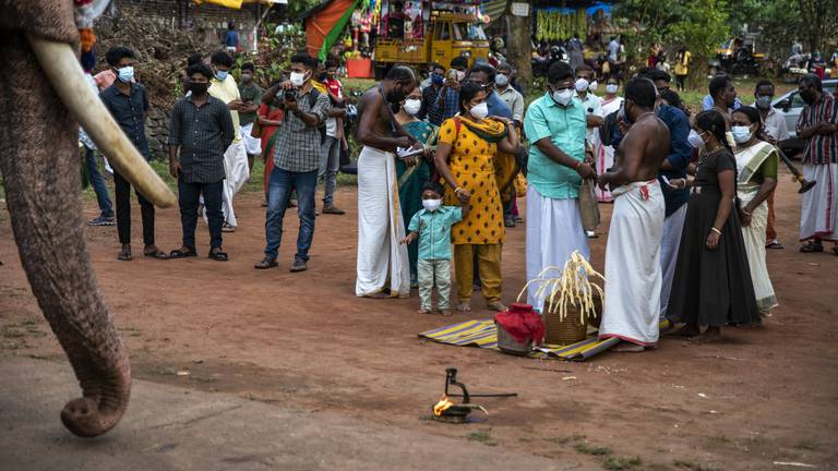 An image that illustrates this article Kerala Covid theme - in pictures