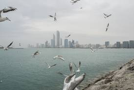 UAE weather: fair with some low cloud