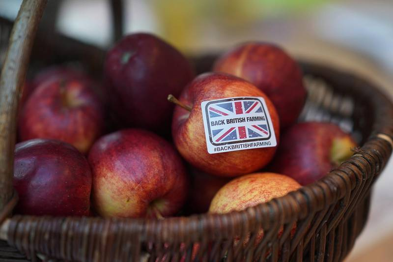 BIRMINGHAM, ENGLAND - FEBRUARY 20:  In this photo illustration a 'Back British Farming' sticker adorns an apple during the National Farmers Union annual conference at the International Conference Centre on February 20, 2018 in Birmingham, England. Earlier Environment secretary Michael Gove revealed more on his plans for post-Brexit agriculture to the National Farmers' Union (NFU) conference.  (Photo Illustration by Christopher Furlong/Getty Images)