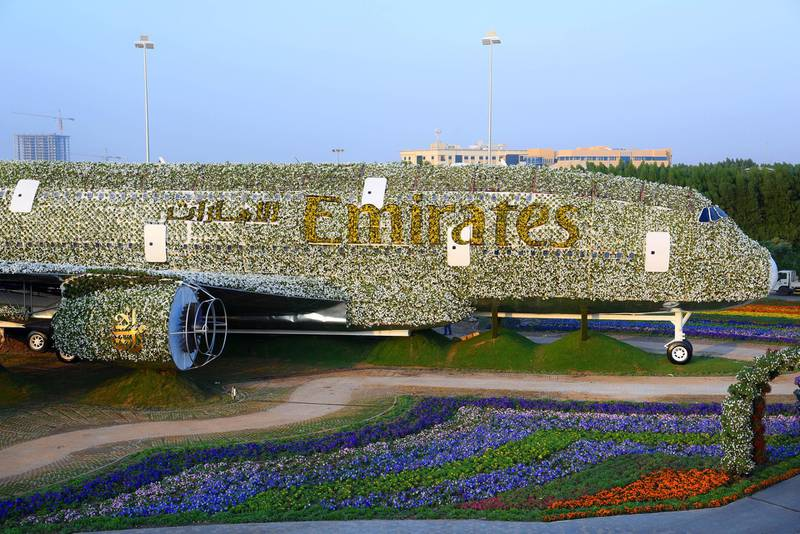 Emirates Airline has teamed up with Dubai Miracle Garden to construct the world's largest floral installation through a life-size version of the Emirates A380, covered in more than 500,000 fresh flowers and living plants. Courtesy Emirates *** Local Caption ***  DSC_2041.jpg
