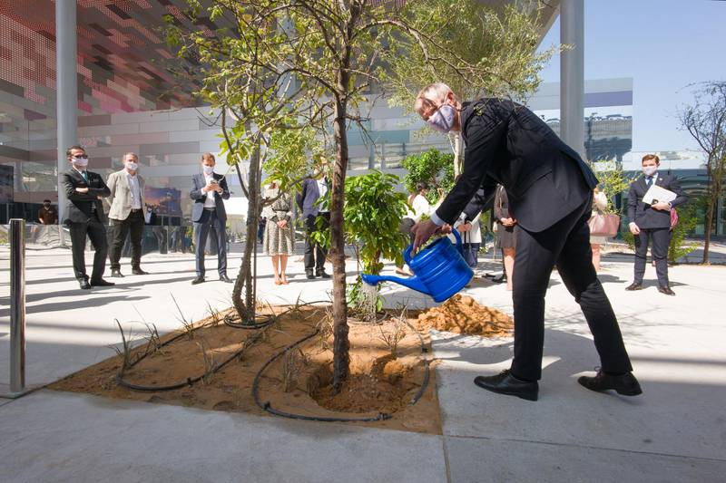 An acacia tree, local to the region, is planted to symbolise the completion of the French pavilion at the Dubai World Expo site.  Courtesy: France Pavilion