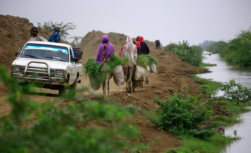 Sudanese farmers advance on donkeys and cars on a dirt road near a stream in Ardashiva village in Sudan's east-central al-Jazirah state, 70 km south of the capital, on August 8, 2020. (Photo by ASHRAF SHAZLY / AFP)